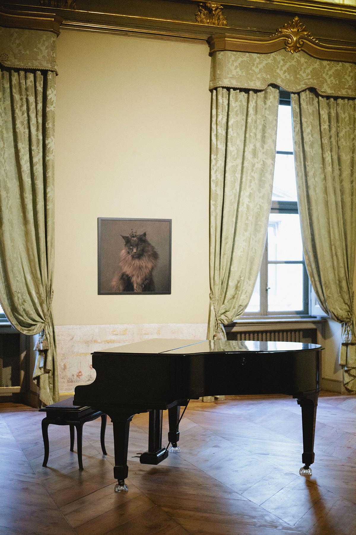 Mostre di arte contemporanea a Torino